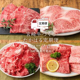 宮崎県産特選 牛肉定期便