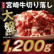 【ふるさと納税】大盤振る舞い高級ブランド宮崎牛切り落し約1.2kg
