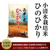 【ふるさと納税】宮崎県産29年度小清水米ひのひかり5kg