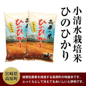 【ふるさと納税】宮崎県産 29年度 小清水米 10kg ひのひかり