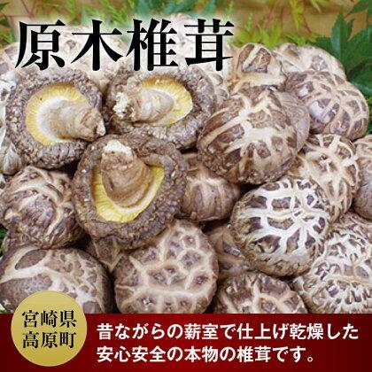 原木椎茸 (薪室仕上げ) 約160g 送料無料 宮崎産 原木 乾燥しいたけ