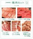 【ふるさと納税】「綾ぶどう豚」「宮崎牛」「宮崎産若鶏」焼肉セット+にんにく塩 3