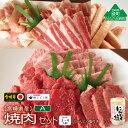 【ふるさと納税】『綾ぶどう豚』『宮崎牛』『宮崎産若鶏』焼肉セット+にんにく塩