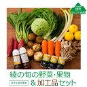 【ふるさと納税】綾町の旬の野菜&加工品セット