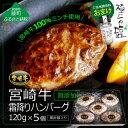 【ふるさと納税】宮崎牛霜降りハンバーグ 5個入り+極上の塩※...