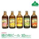【ふるさと納税】綾の地ビール 10本セット