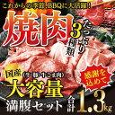 【ふるさと納税】<国産牛・豚たっぷり1.3kg満腹セット>※1?2か月以内に順次出荷となります 焼肉 花いちもんめ 牛肉 豚肉 小間切れ バーベキュー 特産品 宮崎県 高鍋町 【冷凍】