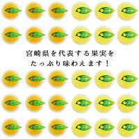 宮崎県産マンゴーゼリー・日向夏ゼリーたっぷり合計30個セット