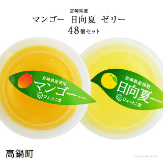 宮崎県産マンゴーゼリー・日向夏ゼリー