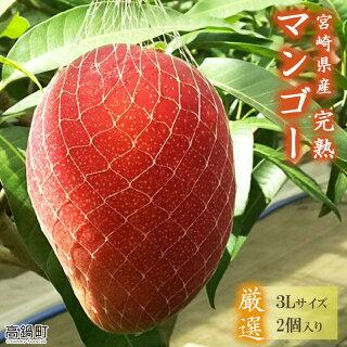 ふるさと納税宮崎産マンゴー