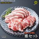 【ふるさと納税】<高鍋町産 佐藤ファームの豚肉 雅セット合計...