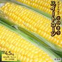 【ふるさと納税】<南国宮崎県産とびきりスイートコーン 4.5kg>※2019年5