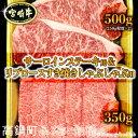 【ふるさと納税】<宮崎牛 サーロインステーキ用500gとリブ...