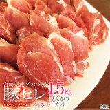 宮崎県産ブランドポーク豚ヒレとんかつカット1.5kg