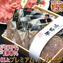 【ふるさと納税】<九州 宮崎 有田牛 牛乃屋謹製ハンバーグ1...