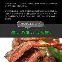 アメリカ産牛タン厚切り焼肉1kg+塩