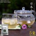 【ふるさと納税】<日本山人参茶2.0g×10包×5袋セット>...