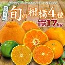 【ふるさと納税】宮崎県産 旬の柑橘 4種 ポンカン デコポン...