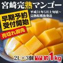 【ふるさと納税】みやざき完熟マンゴー 中玉2Lサイズ 3個(...