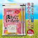 【ふるさと納税】令和元年新米<無洗米コシヒカリ>10kg 送料無料 無洗米 ※2019年8月下旬より順次出荷