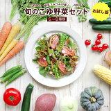 【ふるさと納税】野菜ソムリエが選ぶ 旬のこゆ野菜セット ※お試し版 5〜8種類 送料無料 盛り合わせ 国産