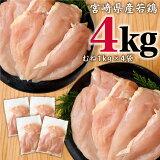 【ふるさと納税】宮崎県産 若鶏 ムネ肉 4kg 鶏肉 国産 九州産 送料無料 ※90日以内出荷