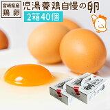 【ふるさと納税】児湯養鶏自慢の卵 ネッカリッチ赤たまご「児湯一番」2箱40個 冷蔵 送料無料 たまご 国産