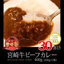 【ふるさと納税】ビーフカレー レトルト 宮崎牛 合計30食分 (160...