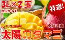 【ふるさと納税】最上級 完熟マンゴー 宮崎県産 太陽のタマゴ...