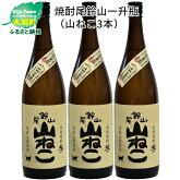 焼酎尾鈴山一升瓶(山ねこ)