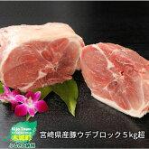 宮崎県産豚ウデブロック