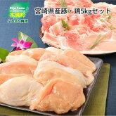宮崎県産豚・鶏5kgセット