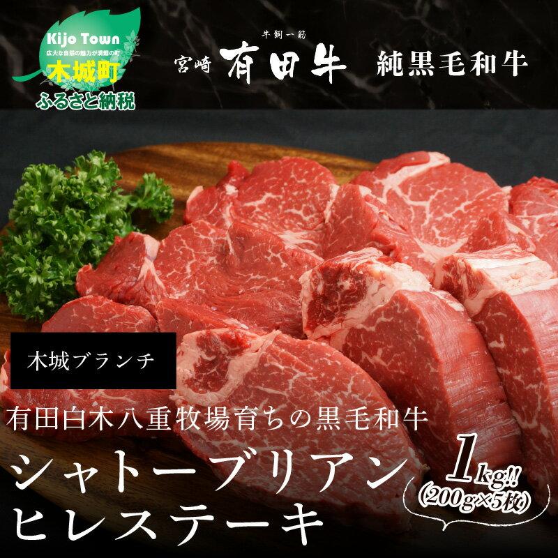 牛肉, ヒレ・シャトーブリアン  1kg(200g5) K200015