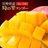 【ふるさと納税】「時の雫マンゴー」4Lサイズ2個入り