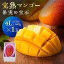 【ふるさと納税】※糖度15度以上※果実の宝石マンゴー4L1玉※2021年初夏〜夏発送※