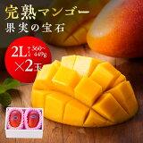 【ふるさと納税】果実の宝石マンゴー2L2玉