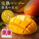 【ふるさと納税】※糖度15度以上※果実の宝石マンゴーL×2玉...