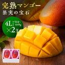 【ふるさと納税】マンゴー 完熟マンゴー※糖度15度以上※『果実の宝石』4L×2玉※2021年初夏〜夏