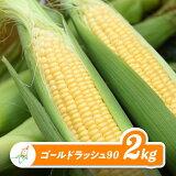 【ふるさと納税】ゴールドラッシュ90(スイートコーン)2kg