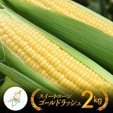 【ふるさと納税】農家直送!スイートコーン2kg