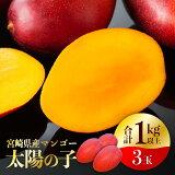 【ふるさと納税】完熟マンゴー「太陽の子」3玉