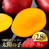 【ふるさと納税】完熟マンゴー「太陽の子」8玉