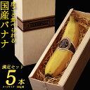 【ふるさと納税】そのままガブリ!皮まで食べられるバナナ「NEXT716」5本入り 生産者こだわりの逸...