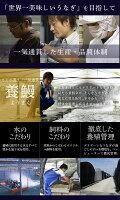 【ふるさと納税】迫力満点うなぎ蒲焼(長焼特大サイズ5尾入)