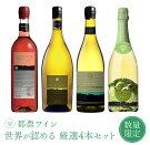 【ふるさと納税】《数量限定》世界が認める都農ワイン4本受賞セット