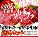 【ふるさと納税】宮崎和牛・宮崎県産豚 焼肉セット...