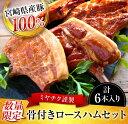 【ふるさと納税】★数量限定★『宮崎県産豚100%使用』謹製 ...