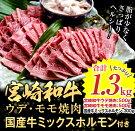 【ふるさと納税】宮崎和牛ウデ・モモ焼肉+国産牛ミックスホルモン