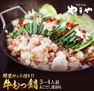 【ふるさと納税】博多の味やまや「牛もつ鍋」あごだし醤油味野菜セット付き3〜4人前