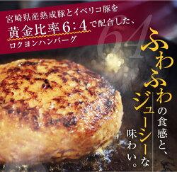 【ふるさと納税】宮崎県産熟成豚とイベリコ豚のハンバーグ120g×10個 画像1